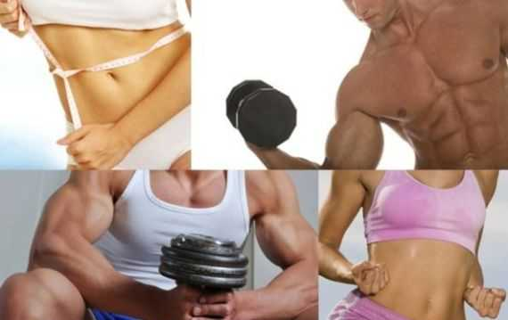 The Holy Grail of Body Transformation