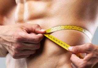 musculo metabolismo