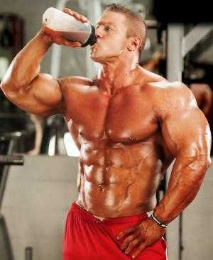 5 receitas weight gainer