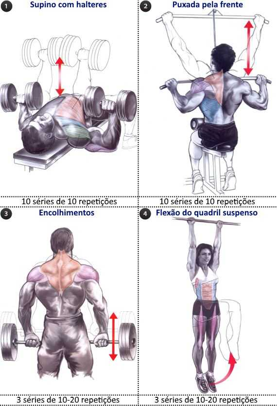 German volume training peitoral, costas e abs