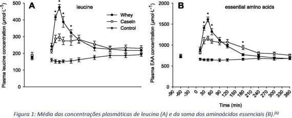whey vs caseína
